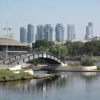 רצף גשרים בתוואי נחל ופארק הירקון
