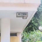 העיר הלבנה, באוהאוס, הסגנון הבנלאומי: שימור בית רובינסקי