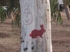 אומנות רחוב: הכמיהה לארנבים
