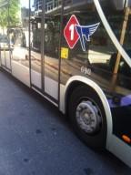 תחבורה ציבורית: הקו האדום המקדים, קו מס' 1