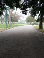 אופניים: חיבור הפארק לאבן גבירול